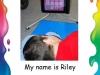 Riley F